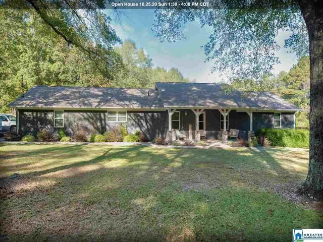 194 Miracle Hills Rd, Springville, AL 35146 (MLS #898452) :: Josh Vernon Group