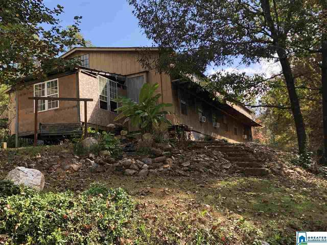 338 Co Rd 810, Heflin, AL 36264 (MLS #898955) :: Josh Vernon Group