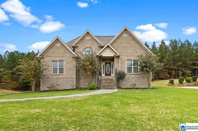 135 Stone Cove Dr, Odenville, AL 35120 (MLS #901055) :: Bailey Real Estate Group
