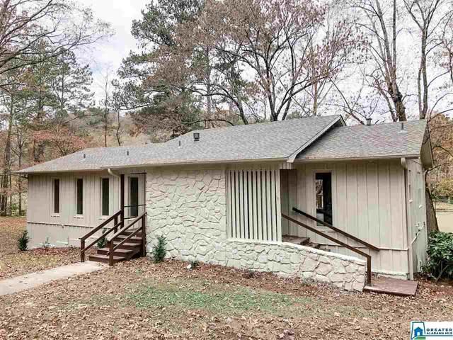 6022 Old Springville Rd, Pinson, AL 35126 (MLS #901542) :: Gusty Gulas Group