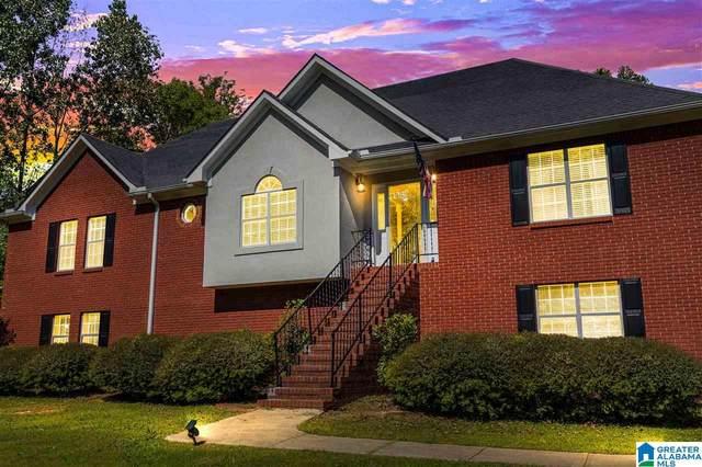 147 Heritage Drive, Springville, AL 35146 (MLS #1279975) :: Bentley Drozdowicz Group
