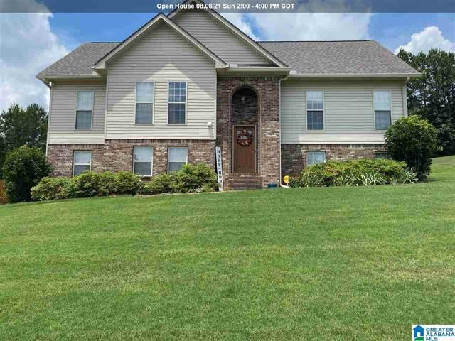 240 Cottage Court, Springville, AL 35146 (MLS #1288542) :: Josh Vernon Group
