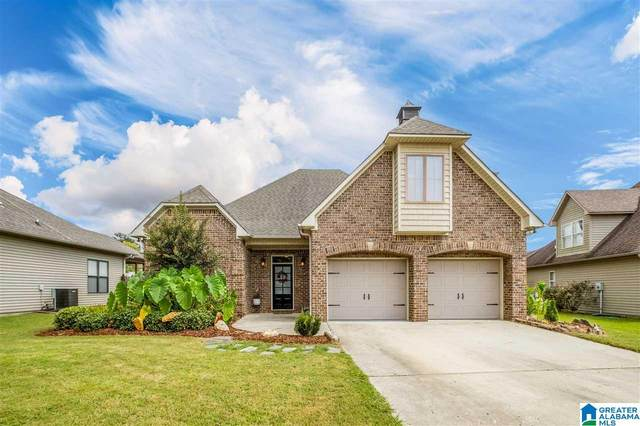 163 Willow View Lane, Wilsonville, AL 35186 (MLS #1297494) :: Lux Home Group