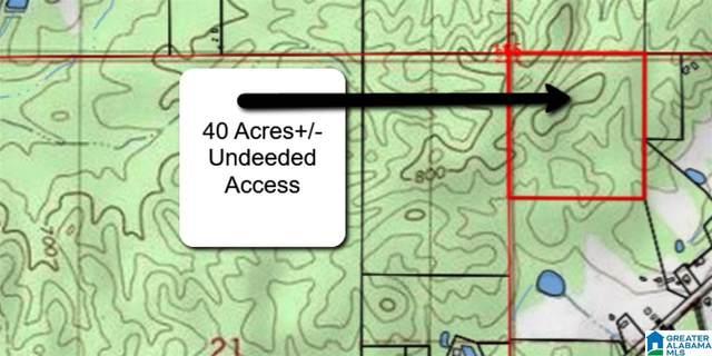 40 Highway 41 #40, Weogufka, AL 35183 (MLS #731853) :: Lux Home Group