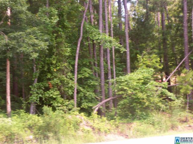 Mountain Woods Lake Rd 11 ACRES, Hayden, AL 35180 (MLS #754086) :: Brik Realty