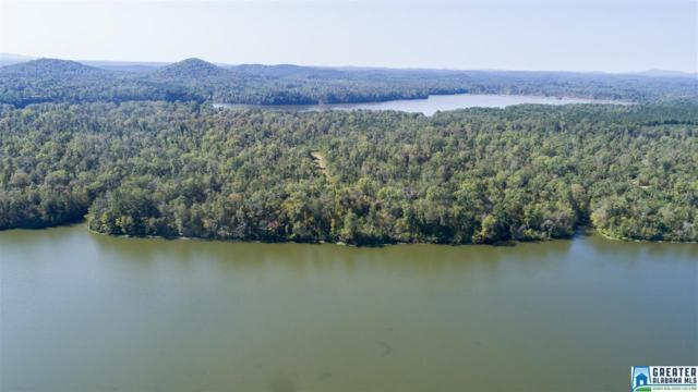 0000 River Ranch Rd 13 Parcels, Ragland, AL 35131 (MLS #755997) :: Josh Vernon Group