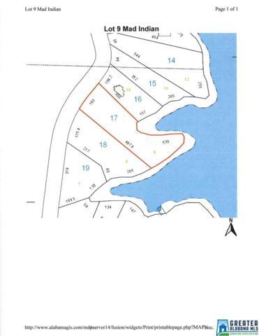 9 Indian Creek #9, Wedowee, AL 36278 (MLS #756658) :: Brik Realty