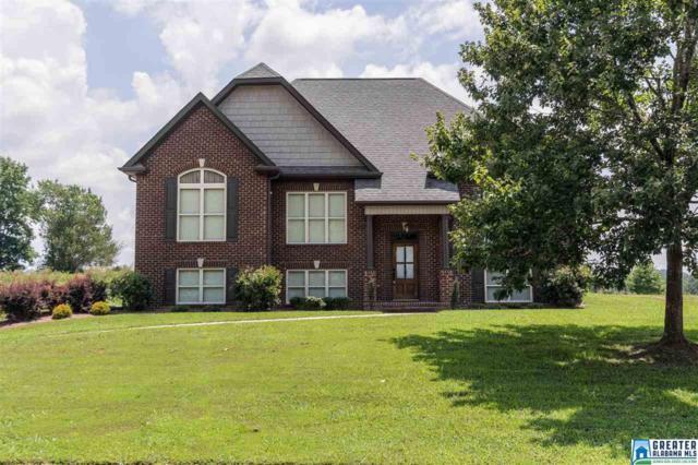 515 Willow Branch Rd, Odenville, AL 35120 (MLS #822296) :: Josh Vernon Group