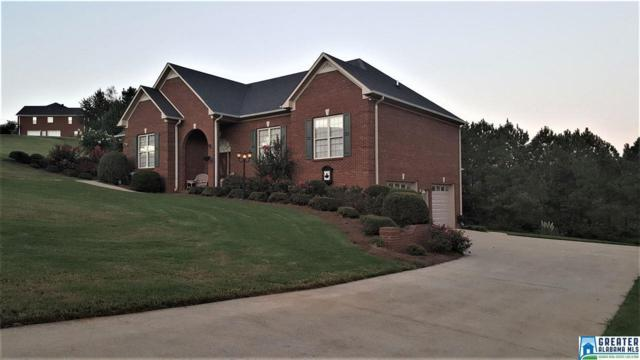 303 Valley View Ln, Oneonta, AL 35121 (MLS #827159) :: Josh Vernon Group