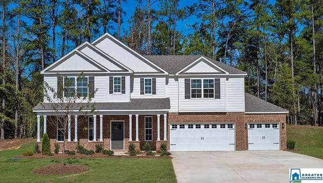 197 Rock Terrace Cir, Helena, AL 35080 (MLS #854384) :: Brik Realty
