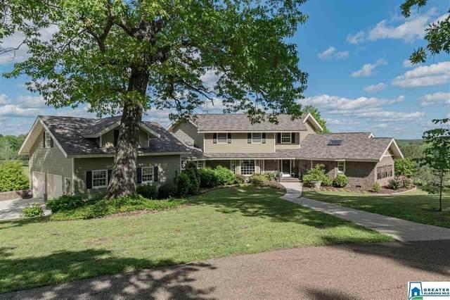 4 Brush Creek Farms, Columbiana, AL 35051 (MLS #881936) :: Bentley Drozdowicz Group