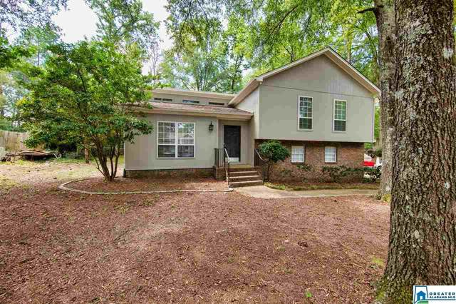 2320 Kala St, Helena, AL 35080 (MLS #892028) :: JWRE Powered by JPAR Coast & County