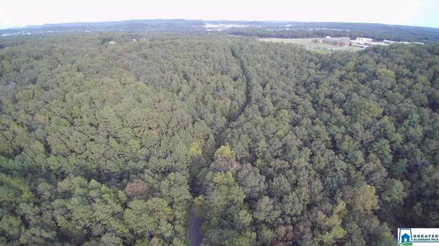 Hwy 17 Burnt Pine Dr 1-36, Alabaster, AL 35007 (MLS #896172) :: Josh Vernon Group
