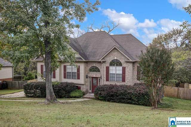 176 Chinaberry Ln, Maylene, AL 35114 (MLS #896557) :: Sargent McDonald Team