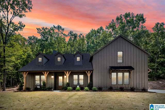 732 Hickory Hollow, Chelsea, AL 35043 (MLS #896600) :: Kellie Drozdowicz Group