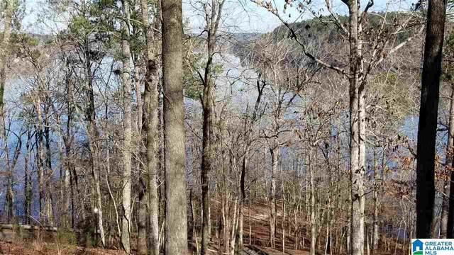 Lot-022 The Ridge Lot-022 - Land , Verbena, AL 36091 (MLS #900033) :: Bentley Drozdowicz Group