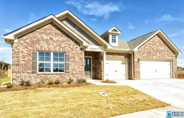 5294 Cedar Creek Ln, Bessemer, AL 35022 (MLS #835962) :: Josh Vernon Group
