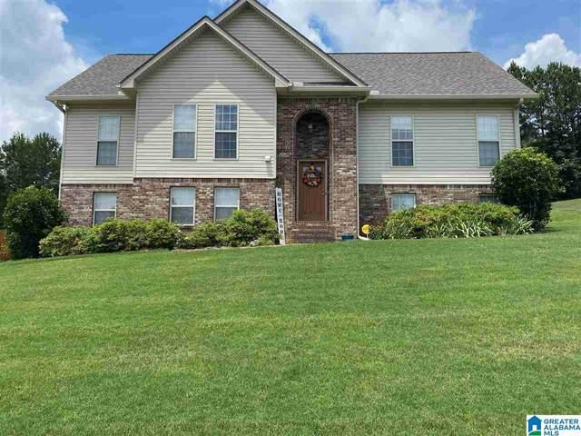 240 Cottage Court, Springville, AL 35146 (MLS #1288542) :: The Natasha OKonski Team