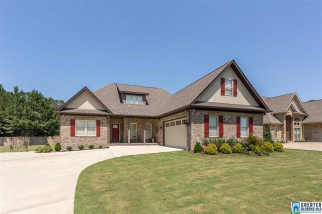 65 Willow Branch Rd, Odenville, AL 35120 (MLS #826705) :: Josh Vernon Group