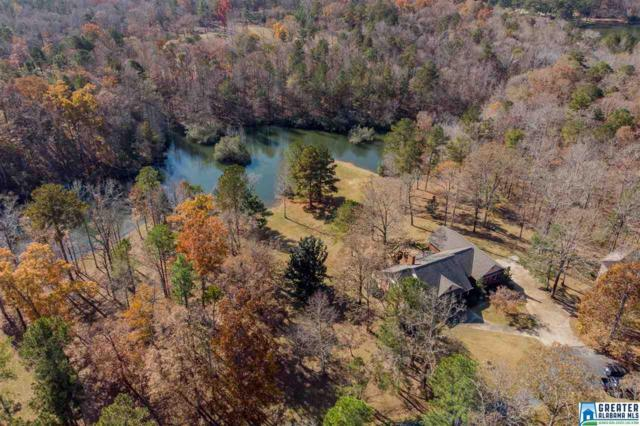 343 Creekside Dr, Harpersville, AL 35078 (MLS #835001) :: Howard Whatley
