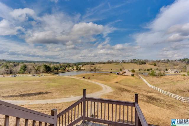 159 Whispering Ridge, Helena, AL 35080 (MLS #837411) :: Josh Vernon Group