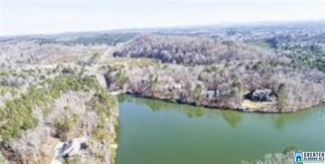 141 Deerwood Lake Dr, Harpersville, AL 35078 (MLS #839321) :: LIST Birmingham