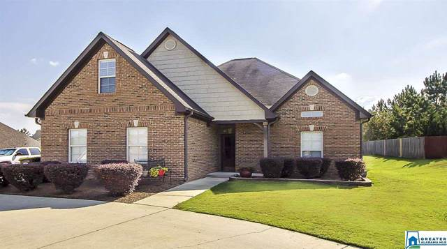 100 Americana Dr, Odenville, AL 35120 (MLS #861665) :: Gusty Gulas Group