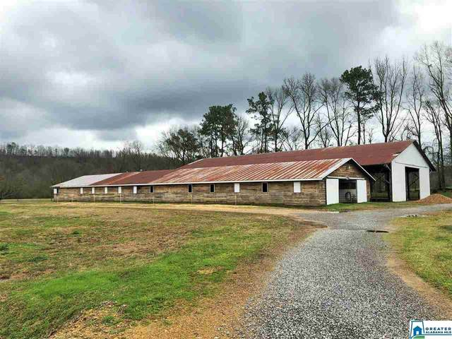 1430 Mineral Springs Rd #1, Pell City, AL 35125 (MLS #866416) :: Krch Realty