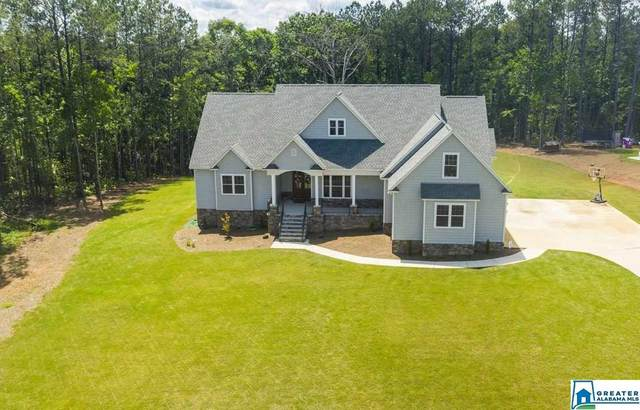 235 Shelby Springs Farms, Calera, AL 35040 (MLS #884249) :: Josh Vernon Group
