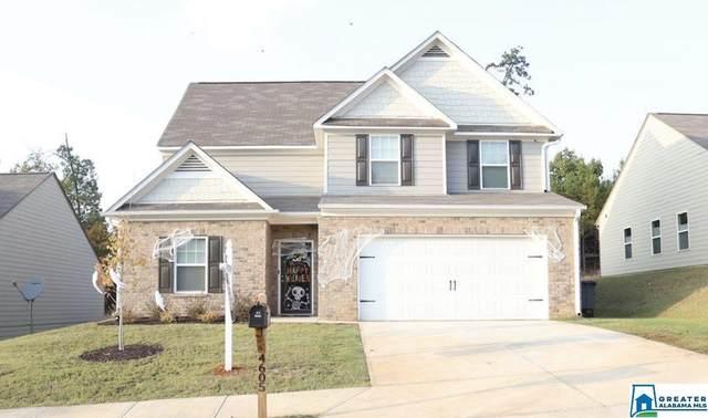 4605 Winchester Hills Way, Clay, AL 35215 (MLS #898458) :: Sargent McDonald Team