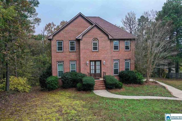 2221 Circle View Ln, Hoover, AL 35244 (MLS #901059) :: LocAL Realty
