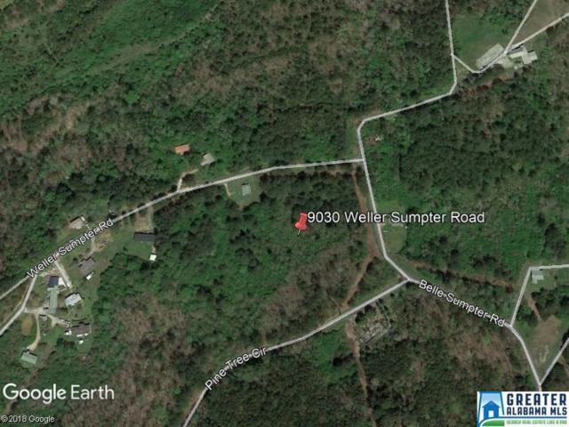 9030 Weller Sumpter Rd 8.1ACRES, Adger, AL 35006 (MLS #534644) :: LIST Birmingham