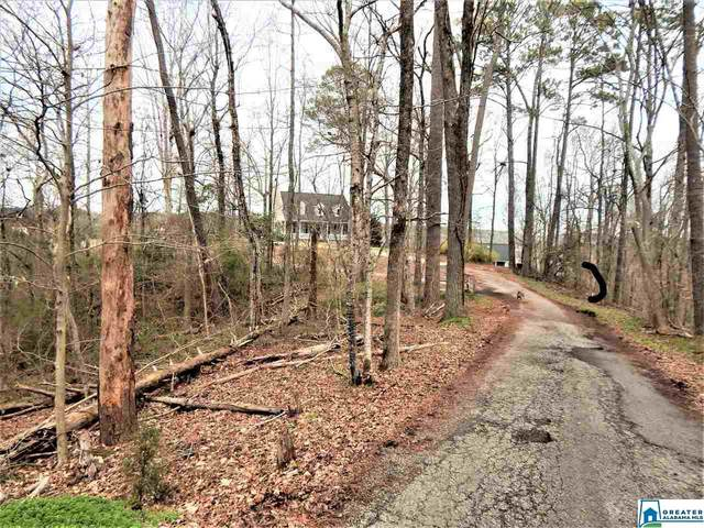 513 Black River Dr 0.65 AC, Adger, AL 35006 (MLS #739473) :: LIST Birmingham
