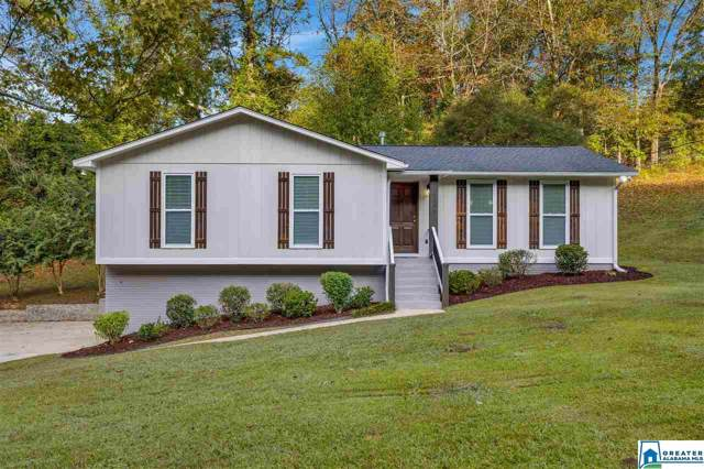 6295 Tyler Loop Rd, Pinson, AL 35126 (MLS #862681) :: Howard Whatley