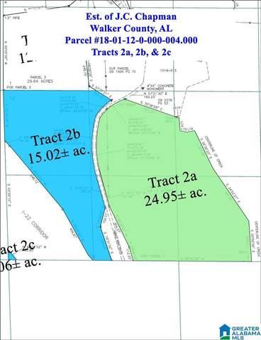 Gamble Road ~36 Ac., Jasper, AL 35501 (MLS #865737) :: Sargent McDonald Team