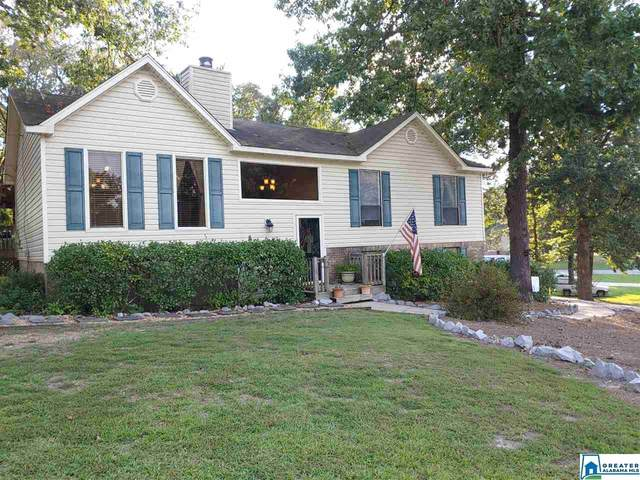 140 Southern Hills Dr, Calera, AL 35040 (MLS #892277) :: Bailey Real Estate Group