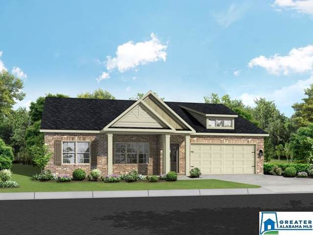 5279 Cedar Creek Ln, Bessemer, AL 35022 (MLS #851409) :: Brik Realty