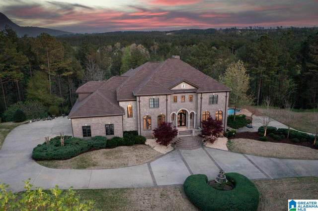451 Overlook Terrace, Helena, AL 35080 (MLS #1278758) :: Bentley Drozdowicz Group