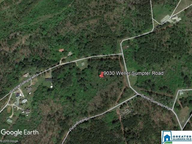 9030 Weller Sumpter Rd 8.1ACRES, Adger, AL 35006 (MLS #534644) :: Bailey Real Estate Group