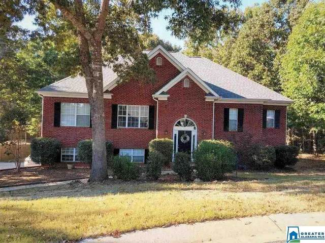 104 Magnolia Ridge Cir, Chelsea, AL 35043 (MLS #899079) :: LocAL Realty