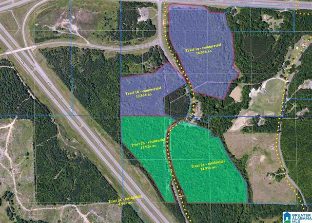 Gamble Road ~36 Ac., Jasper, AL 35501 (MLS #865737) :: Lux Home Group