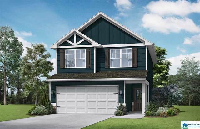 25 Briar Ridge Ln, Odenville, AL 35120 (MLS #876619) :: Gusty Gulas Group