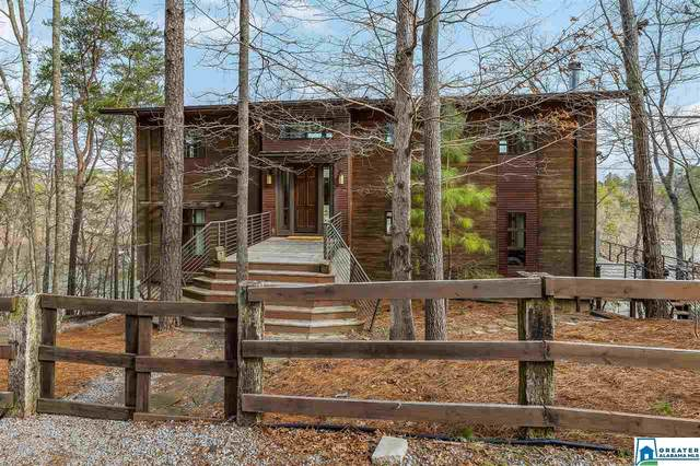 205 Sunset Blvd, Oneonta, AL 35121 (MLS #876889) :: Bentley Drozdowicz Group