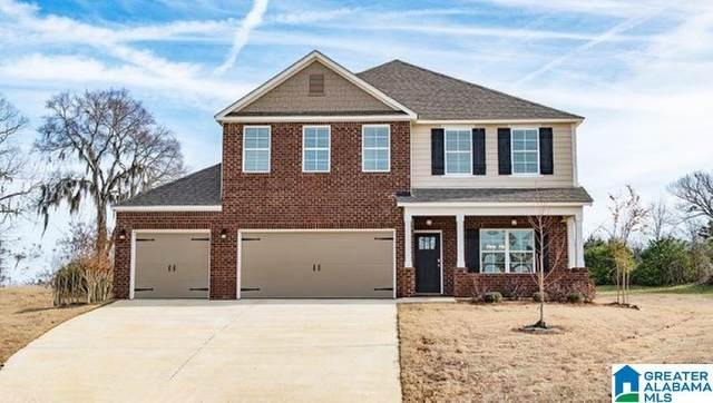 177 Rock Terrace Cir, Helena, AL 35080 (MLS #888468) :: LIST Birmingham