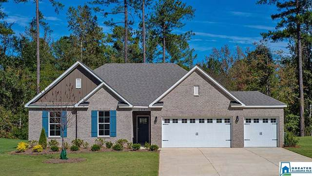 209 Rock Terrace Cir, Helena, AL 35080 (MLS #853890) :: Brik Realty