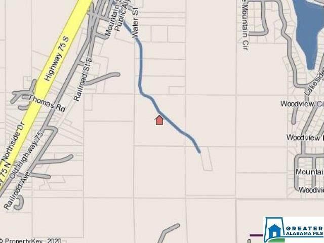 9777 Railroad Ave #0, Pinson, AL 35126 (MLS #1270126) :: JWRE Powered by JPAR Coast & County