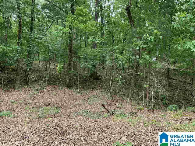 0000 Black Acres Rd #23, Cropwell, AL 35054 (MLS #1272265) :: Lux Home Group