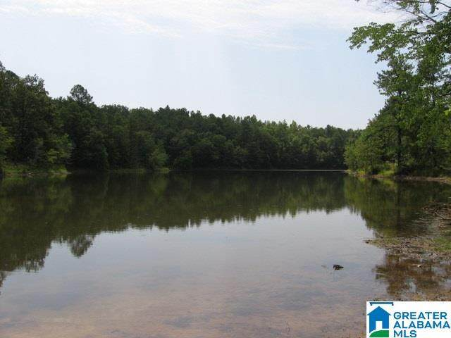 Lake Paradise Rd 2 PARCLS, Vance, AL 35490 (MLS #1272614) :: Gusty Gulas Group