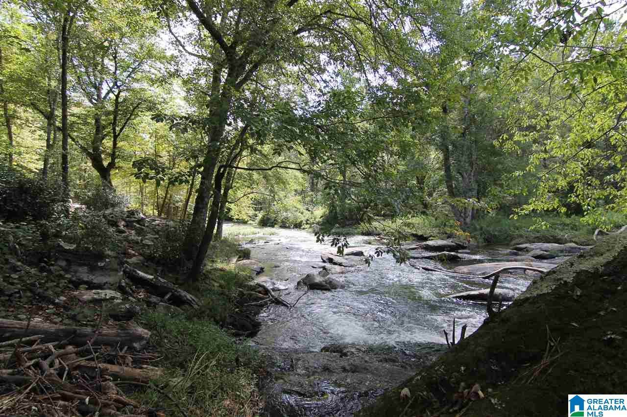 559 Eagle Hill Dr - Photo 1