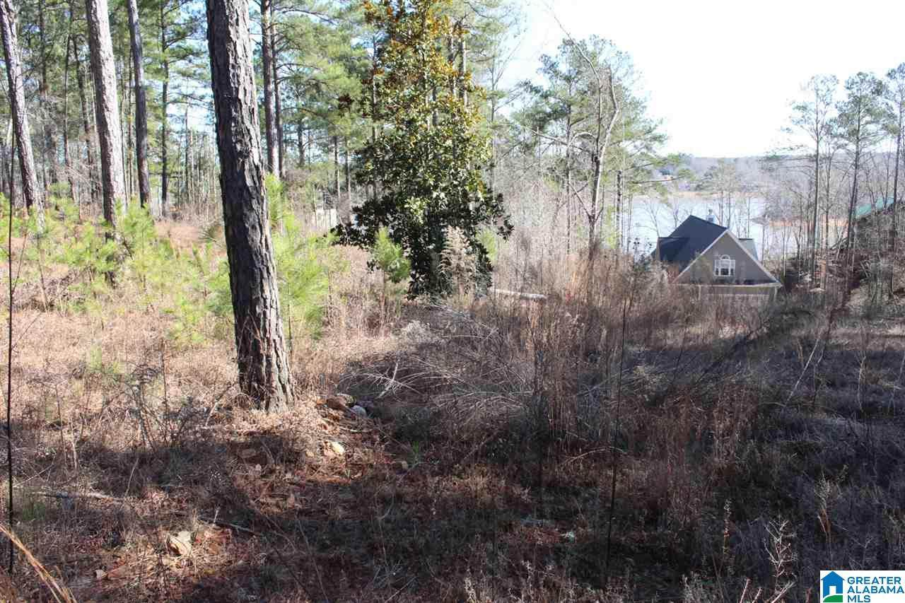Lot 36 Co Rd 256 - Photo 1